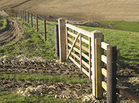 Agricultural stock fence